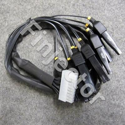 ASNU INJECTOR WIRING HARNESS  (1)