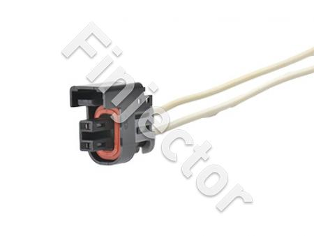 Amazing 2 Pole Female Connector With Wires Delphi For Injectors Wiring Cloud Pimpapsuggs Outletorg